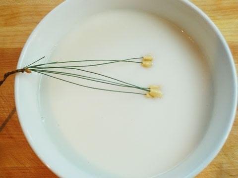 Pine nut porridge (Jatjuk: 잣죽)