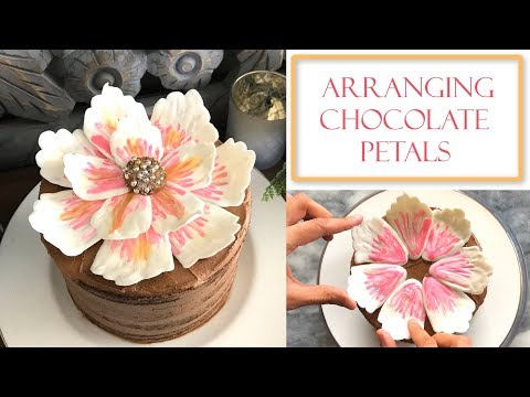 How to Arrange Chocolate Petals on a Cake | Simple Tips