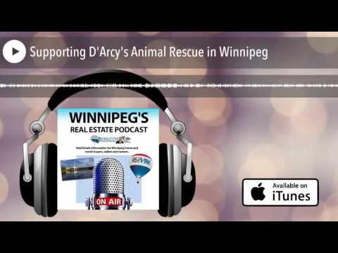 Supporting D'Arcy's Animal Rescue in Winnipeg