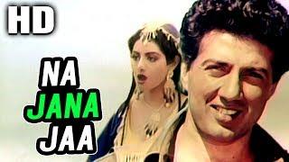 Na Ja Jaane Ja   Asha Bhosle, R.D. Burman  Joshilaay 1989 Songs   Sunny Deol, Sridevi