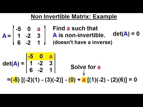 Linear Algebra: Ch 2 - Determinants (23 of 48) Non-Invertible Matrix: Example