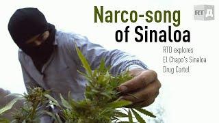 Narco-song of Sinaloa: El Chapo