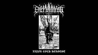 Oferwintran - Ousel of Cilgwri (New Track)