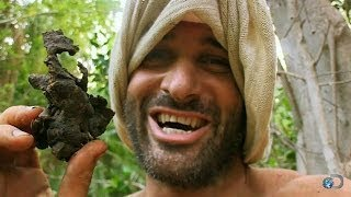 Download Braving Killer Bees for Food | Marooned Video