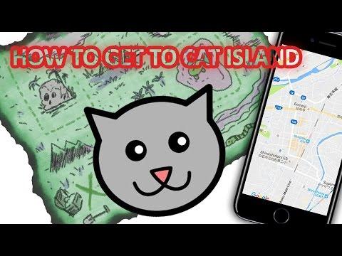 How to get to cat island (Tashirojima) in full detail