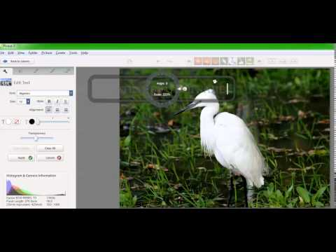 How To Add Watermark Using Picasa