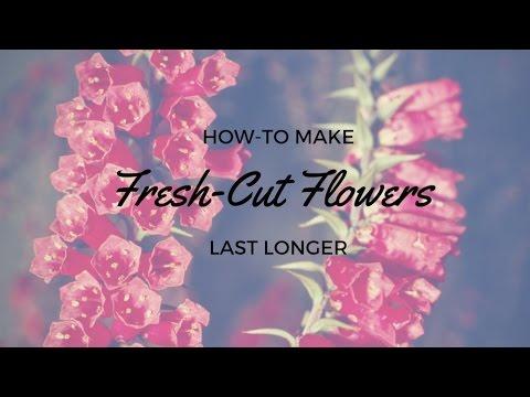 Make Fresh-Cut Flowers Last Longer