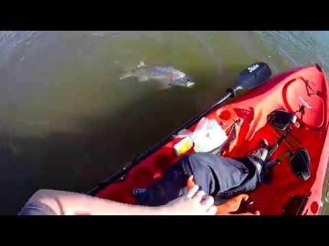Hobie Outback Kayak fishing Redfish Beaufort South Carolina