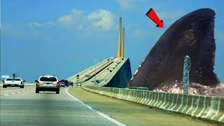 समुद्र के 5 सबसे बड़े और खतरनाक जानवर 5 Most Terrifying Extinct Creatures Ever