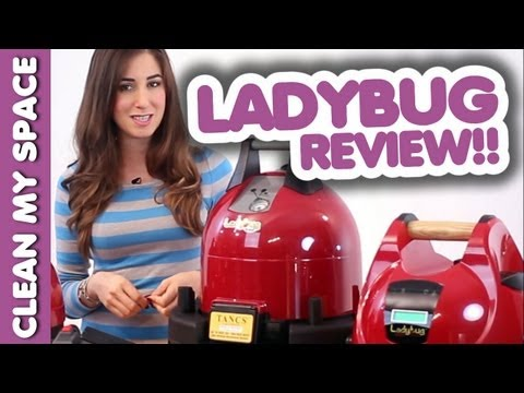 Ladybug Steam Cleaner Review! (Clean My Space)