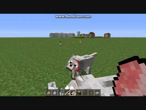 How To Tame Ocelots And Wolves In Minecraft : : XeG KarMa