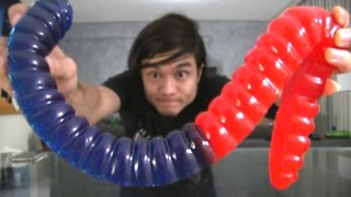 The Giant 3lb Gummy Worm DESTROYED