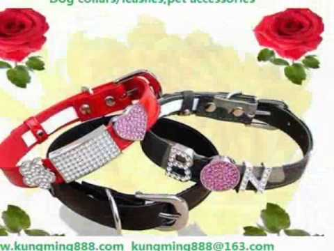 Personalized dog collars wholesale-China factory wholesale directly