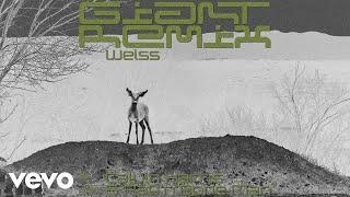 Calvin Harris, Rag'n'Bone Man - Giant (Weiss Remix) [Audio]