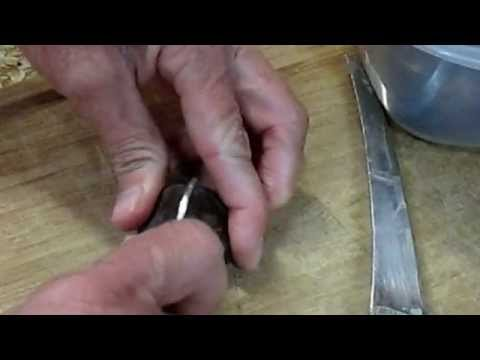 Roasting Chestnuts - Preparation