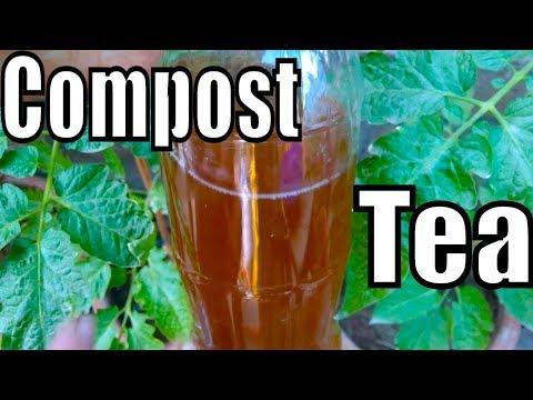 688# How to Make Compost Tea | Cow Dung Tea Is Best Fertilizer & Pesticide for Plants (Urdu/hindi)