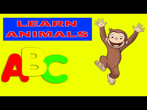 LEARN COLORS AND WORDS FOR PRESCHOOL