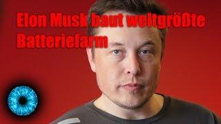 Elon Musk baut weltgrößte Batteriefarm - Clixoom Science & Fiction