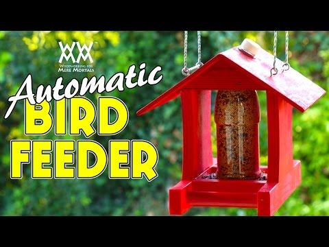 Make an Automatic Bird Feeder