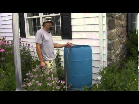 How to Make Compost Tea and a Brewer
