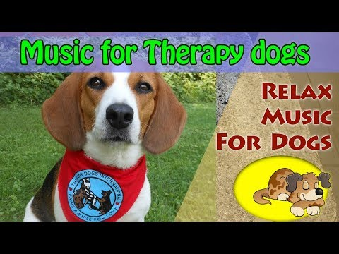 Relax Music for Therapy Dogs
