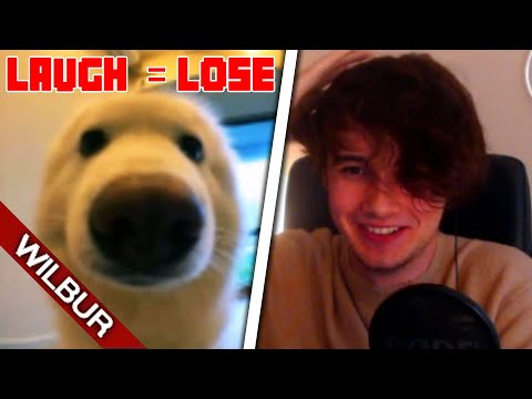 If Twitch Chat Makes Me Laugh the Video Ends