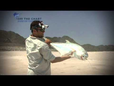 HUGE Queenfish!!! : Spinning in Oman