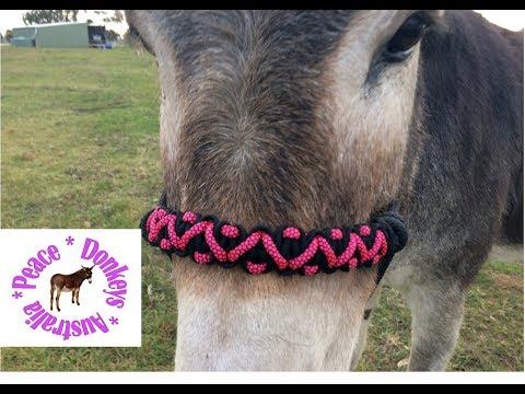 Zig Zag paracord noseband for rope horse halter