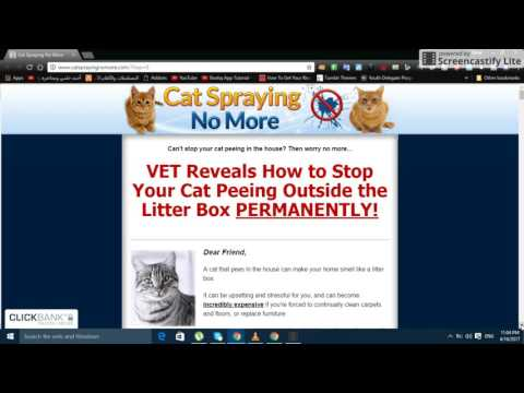 Cat Spraying No More ►http://tinyurl.com/m9m8quq