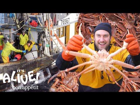 Brad Goes Crabbing In Alaska (Part 1) | It's Alive | Bon Appétit