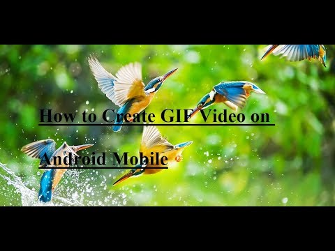 How to Create GIF Video on Android Mobile   MS