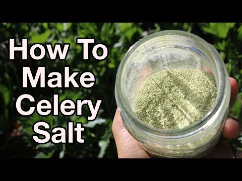 How To Make Your Own Raw Celery Salt
