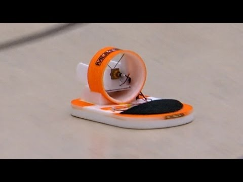 RC Hovercraft Airbug from Flyingwings Presentation *1080p50fpsHD*