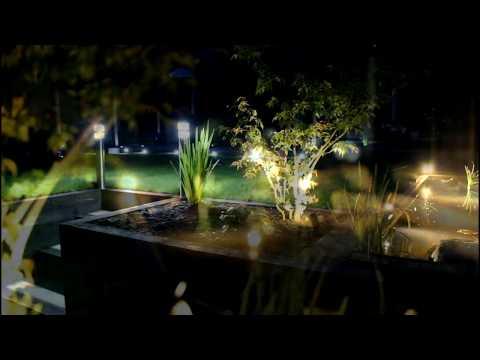 Setting up smart garden lighting with Amazon Alexa control