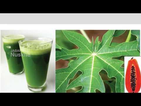 पपीते के पत्तों से पेट करे साफ Papaya Leaf stomach detox drink to keep diseases away
