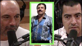 Joe Rogan | The Influence of El Chapo w/Ed Calderon