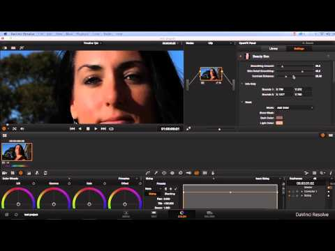 Intro To Beauty Box Video Plugin 3.0 in Davinci Resolve – Digital Anarchy