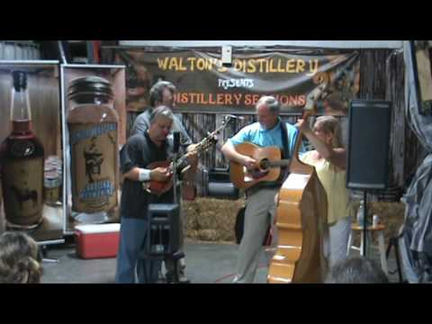 Willow Branch Band performing at Walton's Distillery September 10, 2016 Distillery Sessions