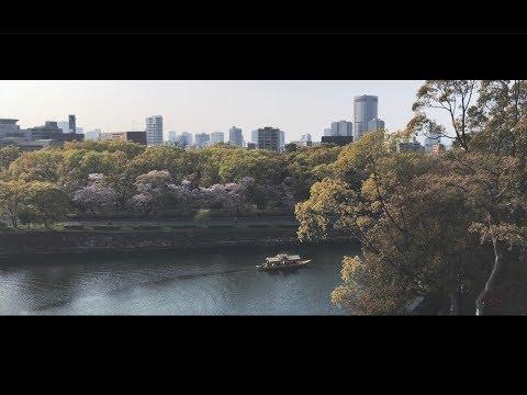 Japan travel video : Tokyo, Odawara, Hakone, Nara, Osaka, Kobe, Toyama, Nikko