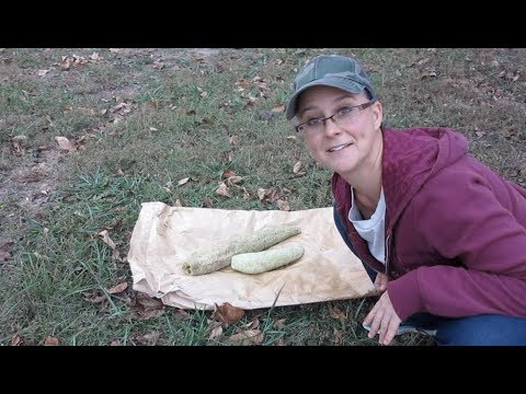 Taking a Luffa Sponge out of a Luffa Gourd