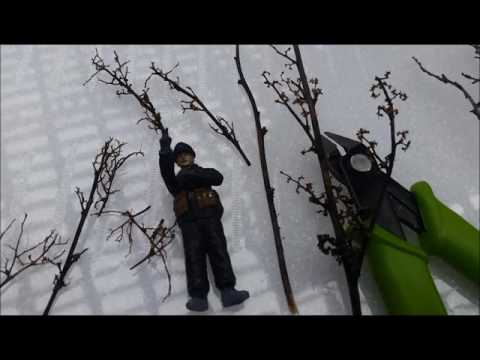 Winter and snow trees for dioramas