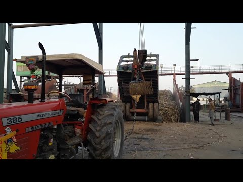 Massey 385 (85hp) Tractor On Hydraulic Jack in Madina Sugarcane WIth Heavy Sugarcane Load