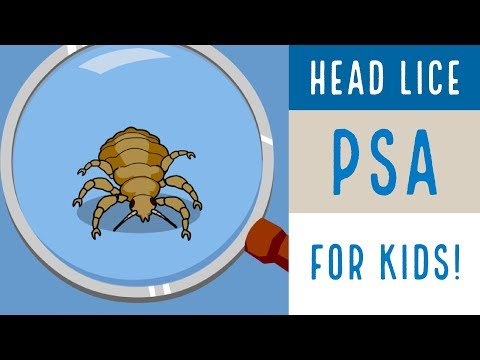 Head Lice PSA for kids