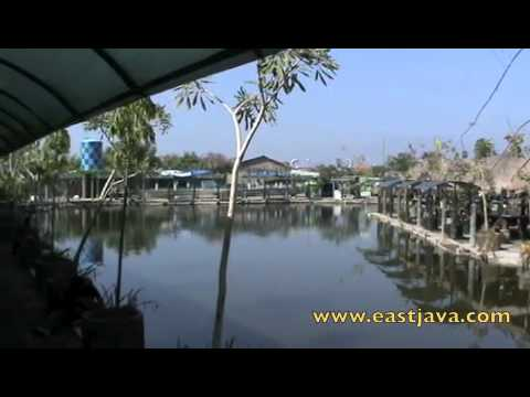 Delta Fishing - Sidoarjo - East Java