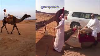 معاد يبغى الرحول ولا ركوبها بعد الطيحه هههه