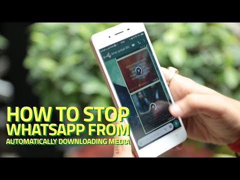 How to Stop WhatsApp From Automatically Downloading Media on Android and iOS