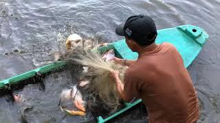 Cast Net Fishing GIANT Piranha Fish GONE WRONG!