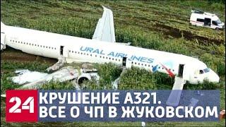Download Чудо в Жуковском: как пилотам удалось избежать катастрофы - Россия 24 Video