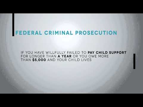 What Happens If You Don't Pay Child Support | Child Support Penalties Explained
