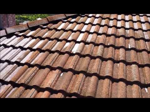 SoftWash Tile Roof Cleaning in San Jose Ca